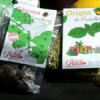 Nouveau ! Les produits Miss Lunch en direct de Pantelleria